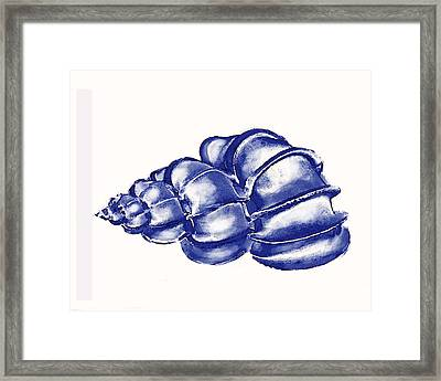 Framed Print featuring the digital art Blue Shell by Jane Schnetlage