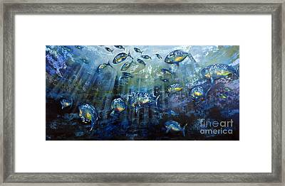 Blue Shoal Framed Print by Dave Hancock