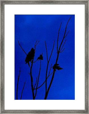 Blue Silhouette Framed Print by Julie Cameron
