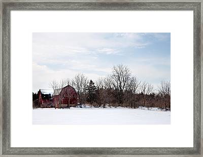 Framed Print featuring the photograph Blue Skies by Courtney Webster