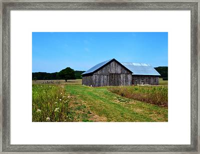 Blue Skies  Framed Print by Michelle Calkins