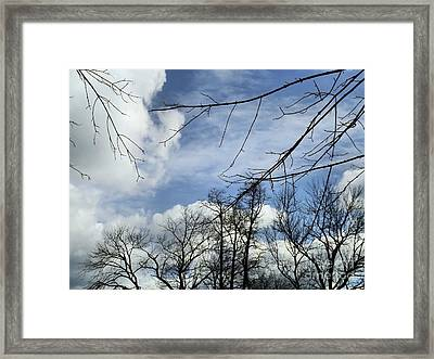 Framed Print featuring the photograph Blue Skies Of Winter by Robyn King