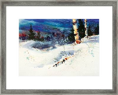 Blue Sky Birch Framed Print by Teresa Ascone