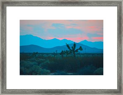 Blue Sky Cacti Sunset Framed Print