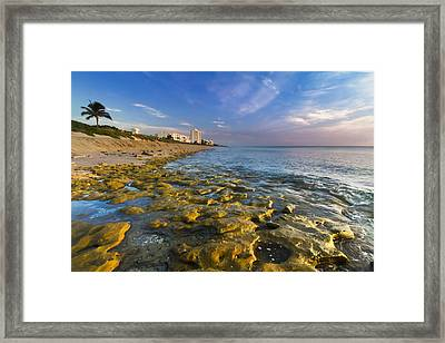 Blue Sky Over Coral Cove Framed Print by Debra and Dave Vanderlaan