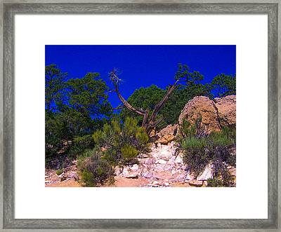 Blue Sky Over The Canyon Framed Print