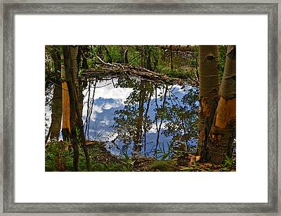 Framed Print featuring the photograph Blue Sky Reflecting by Jeremy Rhoades