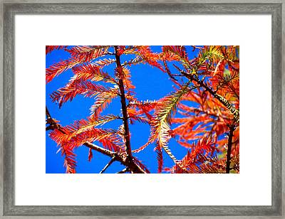 Framed Print featuring the photograph Blue Sky Sunday by David  Norman