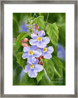 Blue Sky Vine With Background Framed Print by Sharon Freeman