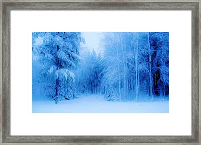 Blue Snowy Night Framed Print