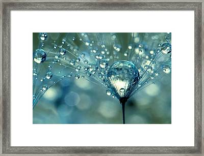 Blue Sparkles Framed Print by Sharon Johnstone