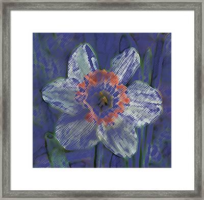 Blue Spring Flower Framed Print
