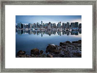 Blue Steel Framed Print by Alexis Birkill