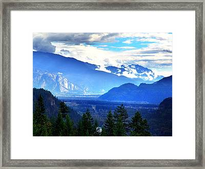 Blue Summer  Framed Print