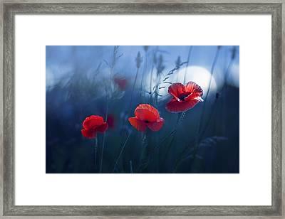 Blue Summer Framed Print by Magda  Bognar