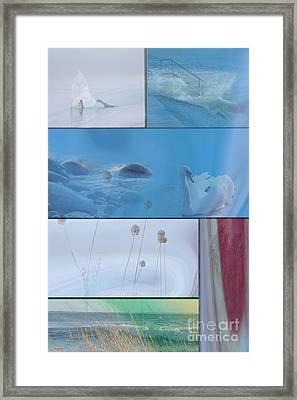 Blue Swan Collage Framed Print by Randi Grace Nilsberg