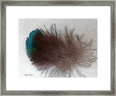 Blue Tip Framed Print