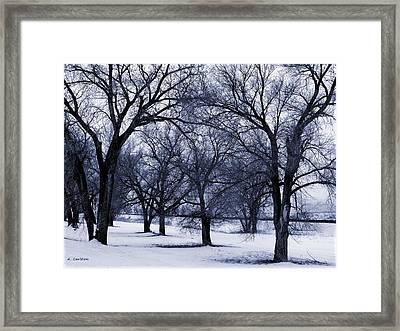 Blue Tone Trees Framed Print by Aliceann Carlton