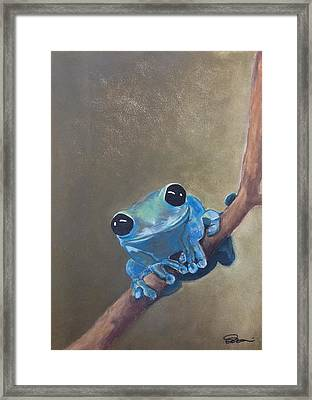 Blue Tree Frog On A Branch Framed Print
