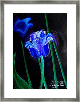 Blue Tulip Variation Framed Print