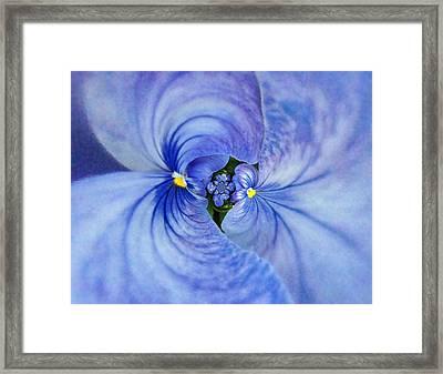Blue Twins Framed Print