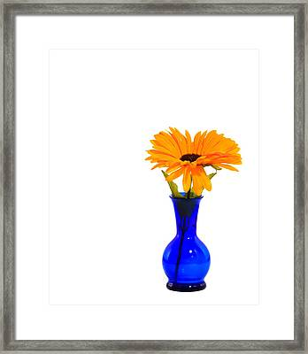 Framed Print featuring the photograph Blue Vase by Cecil Fuselier