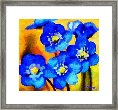 Blue Wild Flowers Tnm Framed Print by Vincent DiNovici