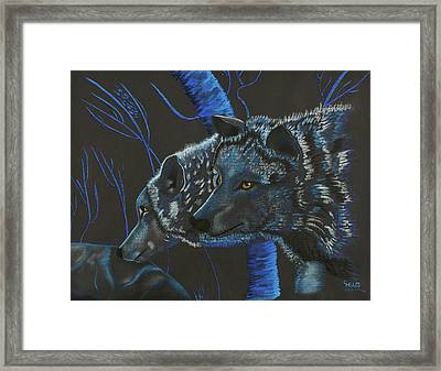 Blue Wolves Framed Print