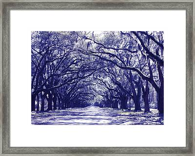 Blue World In Savannah Framed Print by Carol Groenen