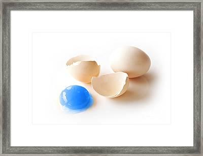 Blue Yolk Egg Framed Print