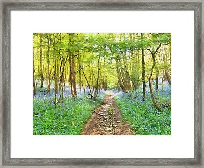 Bluebell Wood Watercolour Framed Print