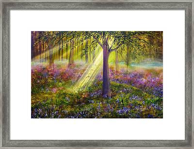 Bluebell Woods Framed Print by Ann Marie Bone