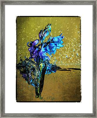 Framed Print featuring the mixed media Bluebells In Water Splash by Peter v Quenter