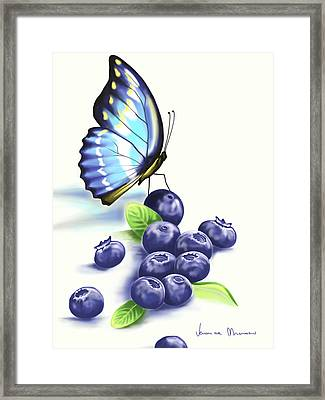 Blueberries And Butterfly Framed Print by Veronica Minozzi