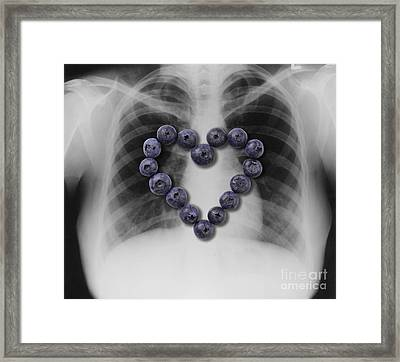 Blueberries, Heart Healthy Food Framed Print by Gwen Shockey