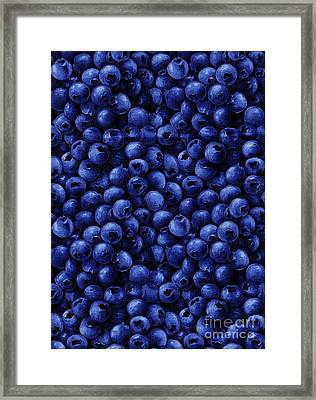 Blueberries In Fabric - Quiltmaker - Seamstress Framed Print