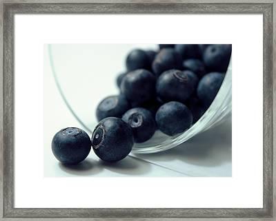 Blueberries Framed Print by Joseph Skompski