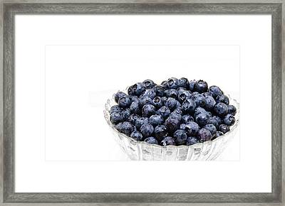 Blueberry 3 Panorama Framed Print by Andee Design