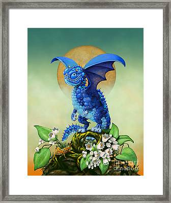 Blueberry Dragon Framed Print