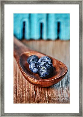 Blueberry Framed Print by HD Connelly