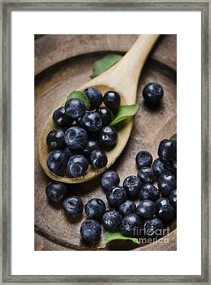Blueberry Framed Print