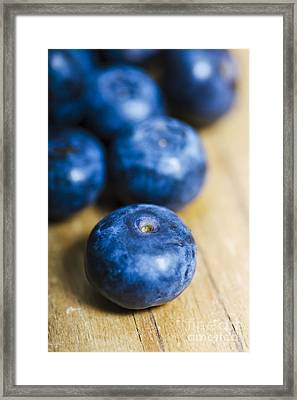 Blueberry Macro Framed Print by Jorgo Photography - Wall Art Gallery