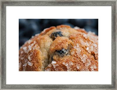 Blueberry Muffin Close Up Framed Print by Brandon Bourdages