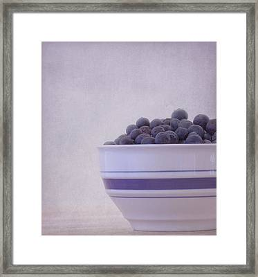 Blueberry Splash Framed Print by Kim Hojnacki