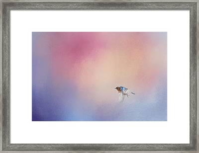 Bluebird 1 - I Wish I Could Fly Series Framed Print by Jai Johnson
