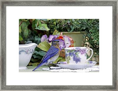 Bluebird And Tea Cups Framed Print