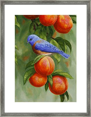 Bluebird And Peaches Greeting Card 2 Framed Print
