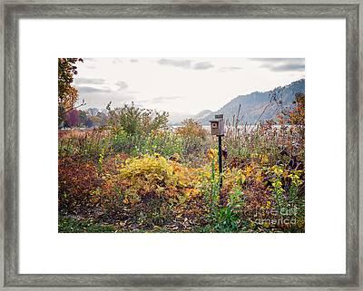 Bluebird House At East Lake Winona Framed Print