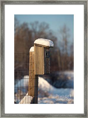 Bluebird House Covered With Snow Framed Print by Linda Freshwaters Arndt