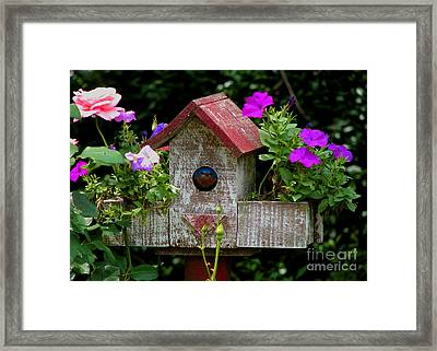 Bluebird House Framed Print